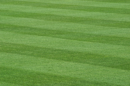 Horizontal Lawn Pattern