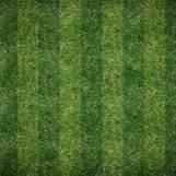 Vertical Lawn Pattern