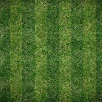 Vertical Lawn Pattern