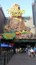 Rainforest Café